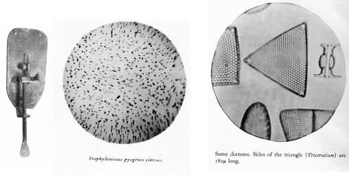 The Van Leeuwenhoek microscope.