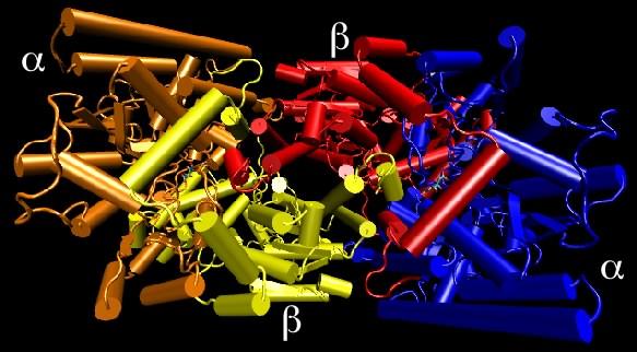 Nitrogenase structure