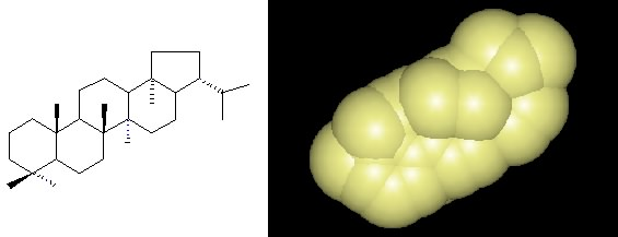 A hopanoid