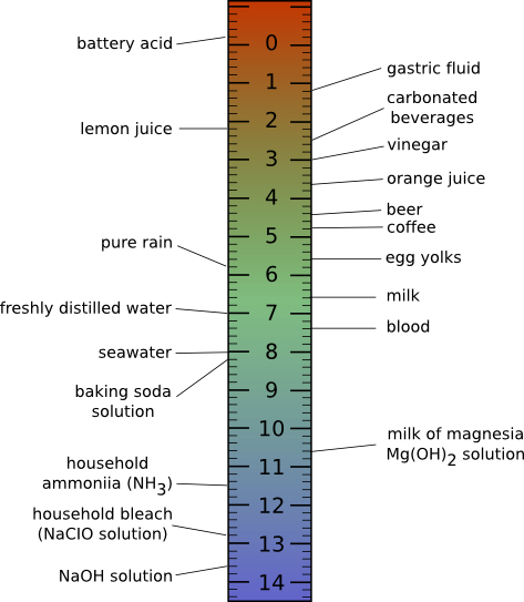 The pH scale and the pH of some common foods.