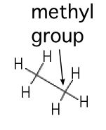 A methyl group